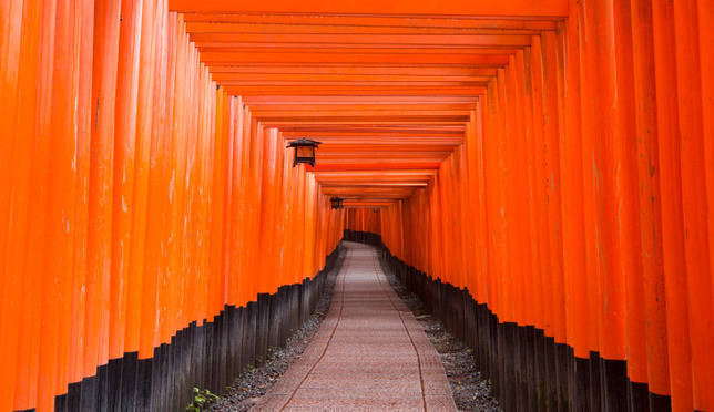 Let's Go! A Walk-Through Guide to the Fushimi Inari Shrine