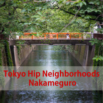 A Day in Nakameguro: Of Cherry Blossoms, Hip Cafes and Small Dogs
