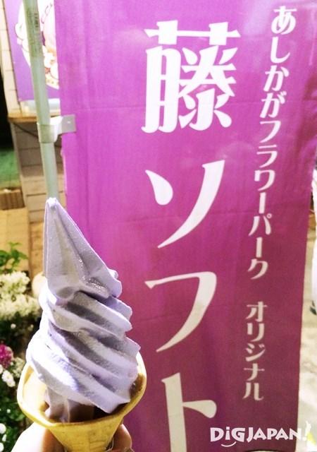 足利花卉公園藤花霜淇淋