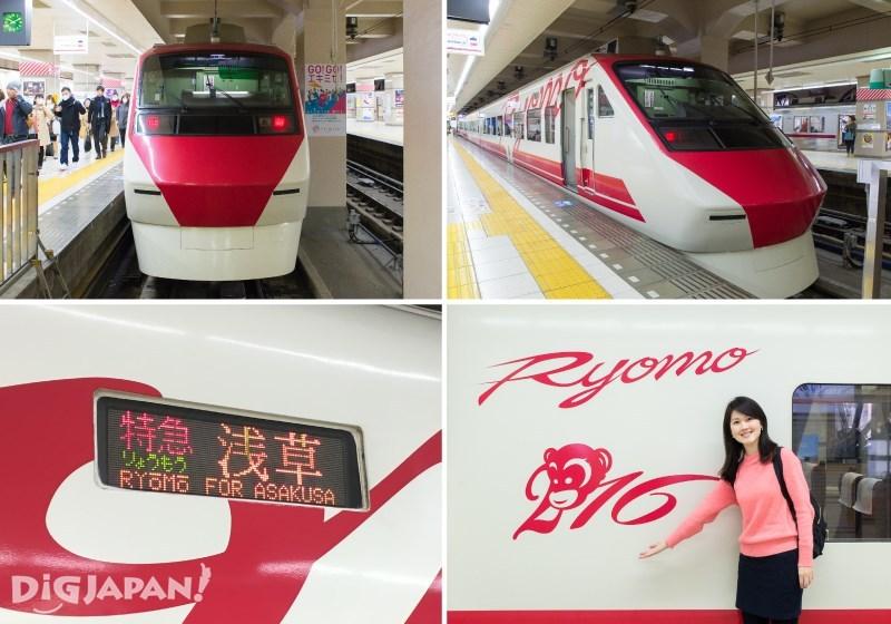 兩毛號台灣自強號彩繪列車