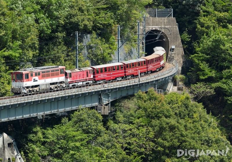 車尾的阿布特式火車頭推動所有車廂,強有力地爬上大陡坡