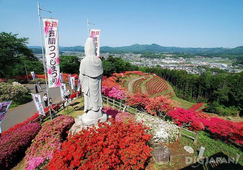 笠間杜鵑花祭4