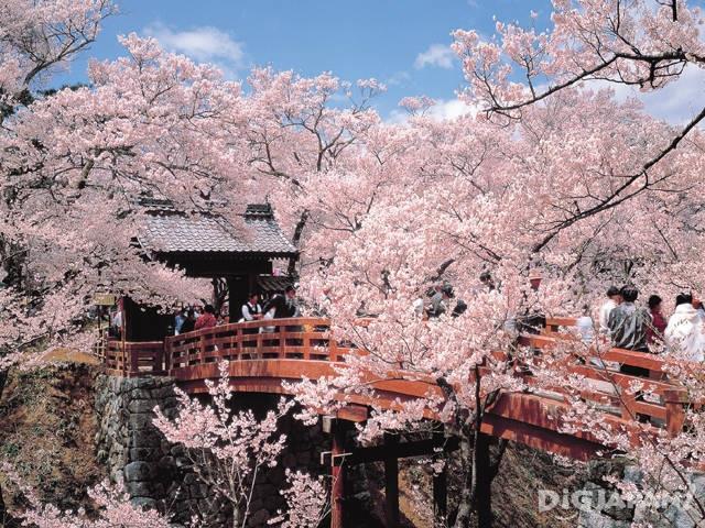 高遠城址公園(長野県)